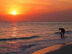 Sarasota Resort Law